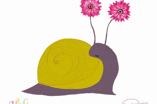 lumaca-floreale-shivu